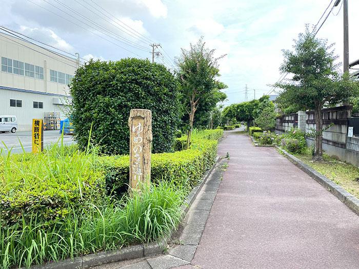 ゆめのき通り<br> この通りは緑豊かな遊歩道です。ここを歩いていくと自然と葵ヶ丘公園に辿りつけるようになっています。